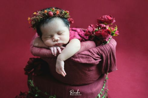 Edelweiss Package - Newborn Photography
